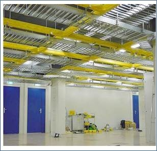 Yellow ducts
